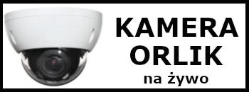 Odnosnik do widoku z kamery na orliku w Zakrzewie
